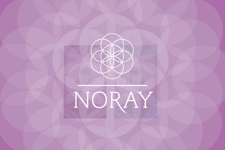 NORAY0